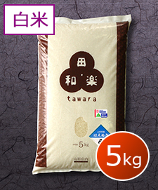 特別栽培はえぬき 5kg 白米