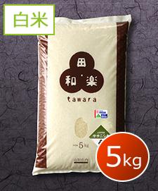 特別栽培ササニシキ 5kg 白米