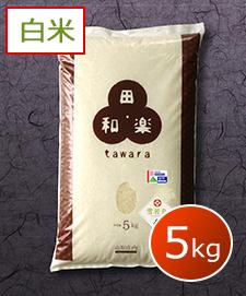 特別栽培雪若丸 5kg 白米